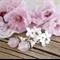 "Bohemian ""Sakura"" Victorian Shabby Chic Wedding Bride Bridesmaid Earrings"