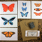 5 Butterfly cards with 5 kraft envelopes.