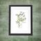 Chamomile Herb A4  Print Herbal Herbs Botanical Botanica Leaves Kitchen