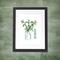 Basil Herb A4  Print Herbal Kitchen Botanical Botanica Leaves