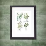 Four Herbs A4  Print Herbal Kitchen Botanical Botanica Leaves