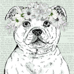"Staffordshire  Bull Terrier with Floral Garland 8"" x 10""  Dog Art"