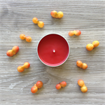 Desert Quandong - Beeswax - Bush Tucker Candle