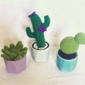 Set of three crochet succulents
