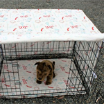 Dog crate cover and pad set . pet crate mat . pet crate cover. pet crate mat.