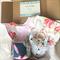 Baby Gift Set - Bib, Dribble Bib, Sensory Block, Fox Rattle Teether