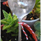 Vintage spoon Plant markers... 'Nan's Garden' READY NOW...