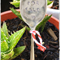 Vintage spoon Plant markers... 'Weeds for sale' READY NOW...