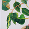 A4 Print Green & Purple Gumnuts - gum tree branch - Australian flora botanical