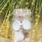 White Sea Glass Bezel Set Earrings