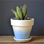 Sky Blue Dip Dyed White Terracotta Pot or Planter