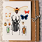 Insect Collection detail CARD
