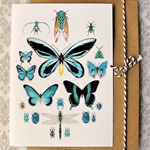 Teal Insect Collection CARD