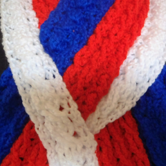 Support Premiers - Western Bulldogs in Style - Also Hats and Beanies