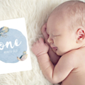 Boys Baby Milestone Cards. Boho Feathers - Monthly Pack of 13 Cards