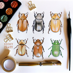 Chrysina Beetle Collection