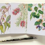 Mixed set of 3 Australian flora cards & 3 envelopes