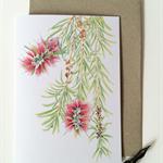 Bottlebrush card &  envelope