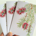 Set of 3 Bottlebrush cards & 3 envelopes