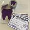 Tooth Fairy Kit - Purple