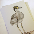 5 Beach-nesting Birds greeting cards inc DONATION to Birdlife Australia