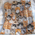 Kitty Cage Comforter