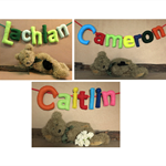 Personalized Name Banner Custom Felt  7 Fabric Bunting Baby Wall Art Banners