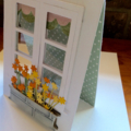 House warming/birthday cards. Flower box see thru window cards.
