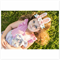 """""""Sweetheart Easter Bunny"""" nylon headband in colour of your choice"""
