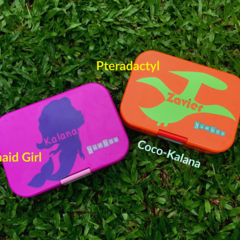 Personalised Decals for lunchboxes.