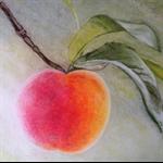 'At Morning Light' pastel drawing