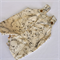Overalls for Baby Boy in Beige jungle animal cotton print - newborn 000