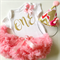 First Birthday Coral Pink  Tutu and Party Hat & Bodysuit Birthday Party Outfit