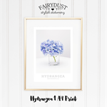 Hydrangea 1 A4 Print