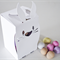 Easter Rabbit (Bunny) Gift Boxes - 2 Pack - Pixels Plus Paper original