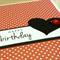 Girls Happy Birthday card - lady bug