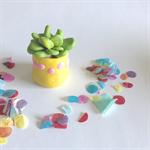 Miniature Fantasy Garden - Polymer clay plant /succulent / sculpture