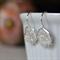 Sterling Silver Star Relic Hook Earrings.