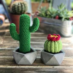 Miniature crochet duo, cactus in a mini pot