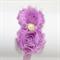 Vintage Shabby Chic Flower Headband - Purple