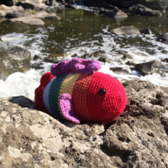 Rainbow Fish | Soft Toy | Amigurumi | Gift | Baby | Hand Crochet | Ready to Post