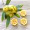 Wattle - Beeswax - Wax Melts