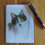 Blank Greeting Card - Black and White Cat