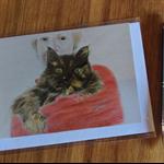 Blank Greeting Card -Tortoiseshell Cat