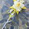 Flower-girl Floral Wand - Yellow Star Wand with Butterflies for Flowergirl