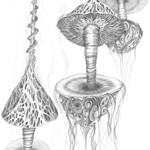 Mushroom Drills