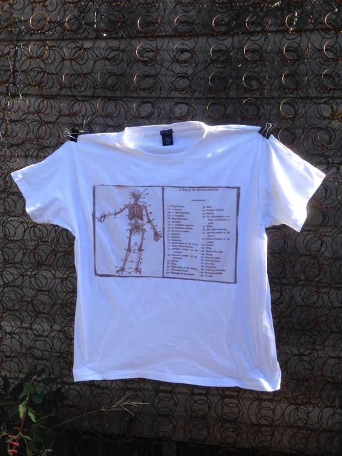 Skeleton Sun Printed Human Anatomy T Shirt Unisex Short Sleeved Size