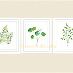 Botanical Leaves VALUE Set of 3 Prints, A4 Size Watercolour Ferns and Leaves