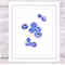 Blueberries Print, A4 Size Watercolor Blueberry, Kitchen Print