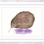 Kiwi Bird Print, A4 Size Watercolor Kiwi
